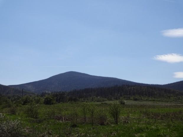връх Черноглав