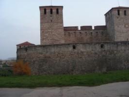 Общинари във Видин спряха уникален археологически проект