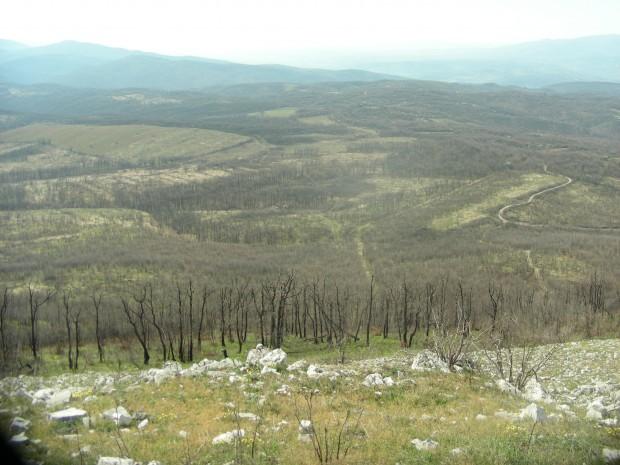 Бъчварова средния път е границата със Сърбия, а десния път е сръбски.