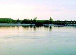 € 2 вход за рай насред Дунав. Плажът по-хубав от дюните на Златните, дават го на промоция