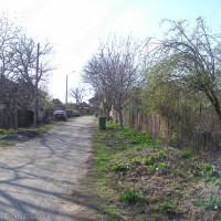 Село Динковица