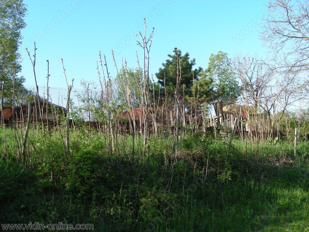 Къщи в градсковски колиби