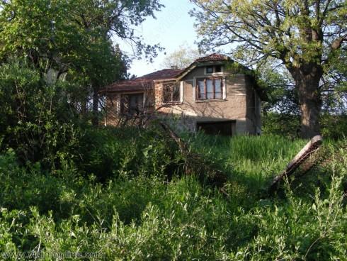 Видинското село Градсковски колиби вече е достъпно за света