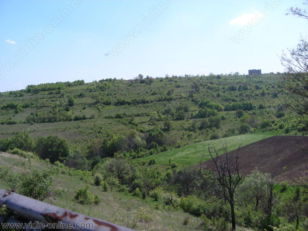 пейзаж каниц
