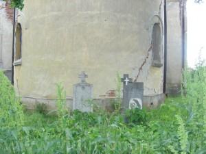 село ракитница