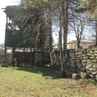 Село Търговище