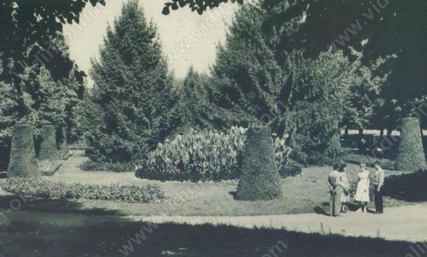 Видин. Градската градина