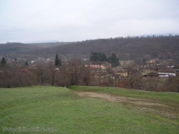 село Боровица