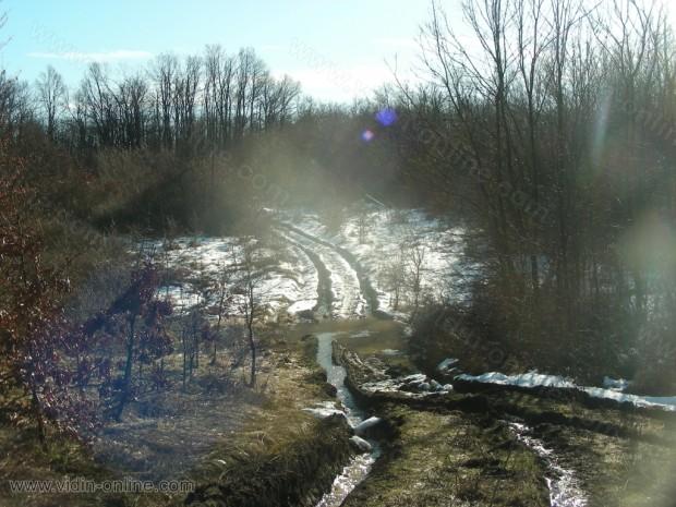 Дърварски път