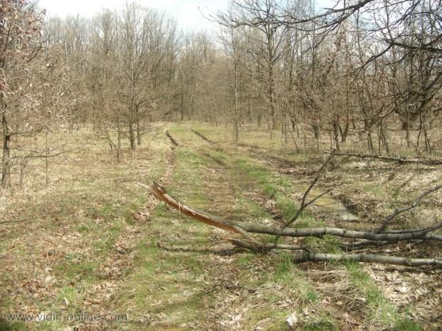 горски път до село Големаново