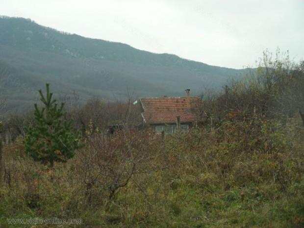 Първоловски колиби