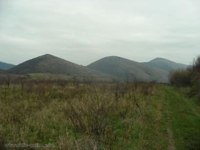 Залесяват пустеещи земи в община Белоградчик