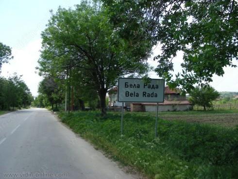 Гъсеници унищожават кайсиите и прасковите в село Бела Рада