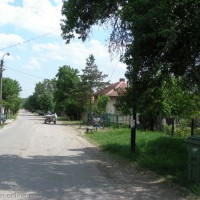 Снимки на Бела Рада