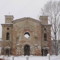 Видин зима 2012