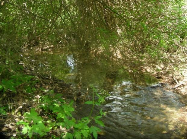 река Добринов дол до село Киреево