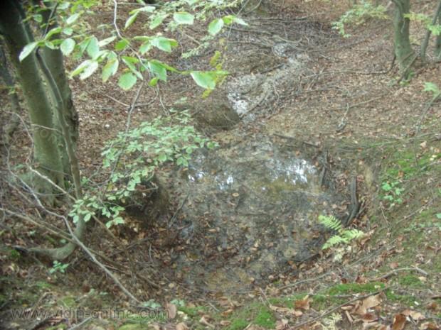 Извор на приток на река Стакевска