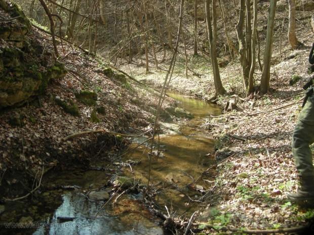 Река Видбол в парк Божурица