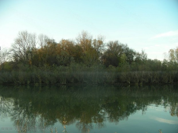 Устие на река Тимок, най-северната точка на България