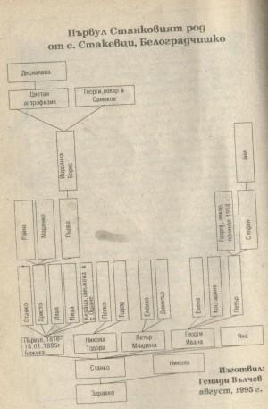 Родословното дърво на Първул Станков
