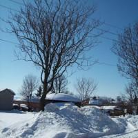 град Кула - зима