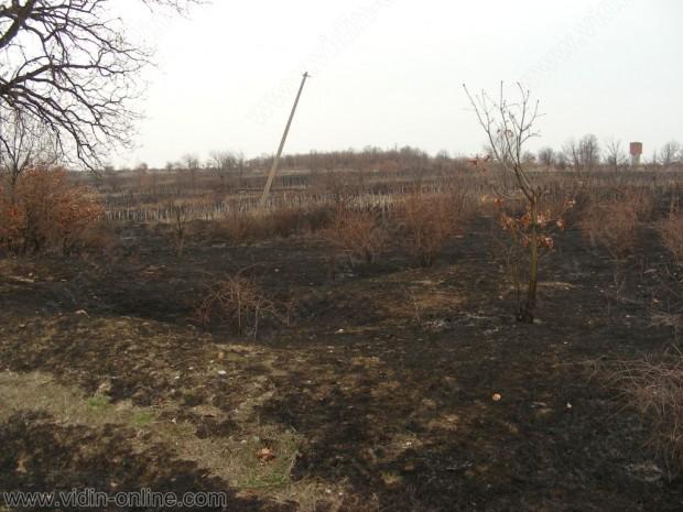 """19 нелегални мигранти са установени в местността """"Лозята"""", в землището на село Шишенци"""
