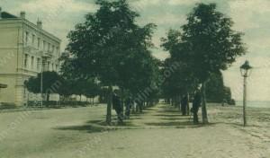 Градската градина - Видин