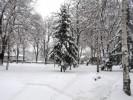 Снимки на Видин Февруари 2011г.